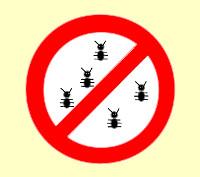 nobugs